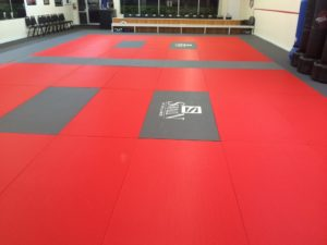 swain sectional mats